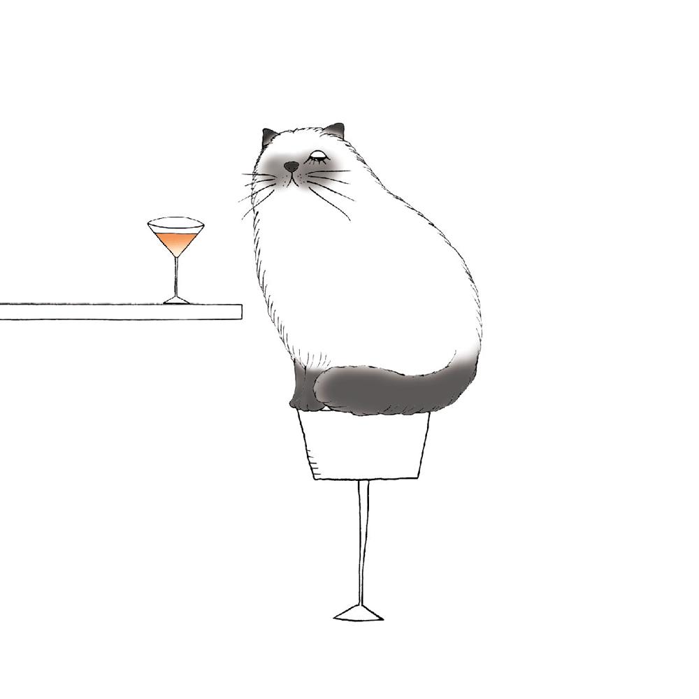 イラスト カクテルを飲むヒマラヤン猫