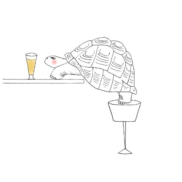 イラスト ゾウガメ